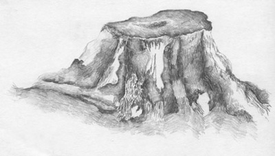 A Troll On A Tree Stump Drawing by Christoffer Saar